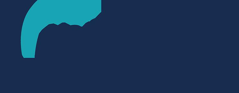North Atlantic Industries Inc